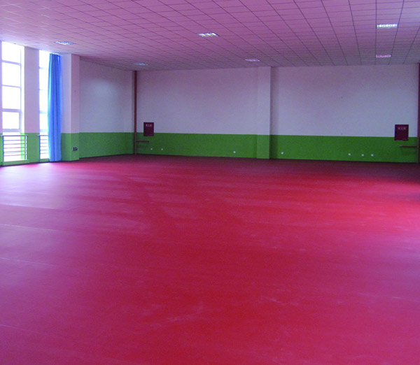 德阳体育馆地板