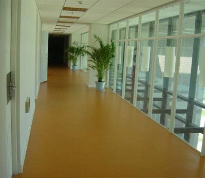 商业橡胶地板实例001